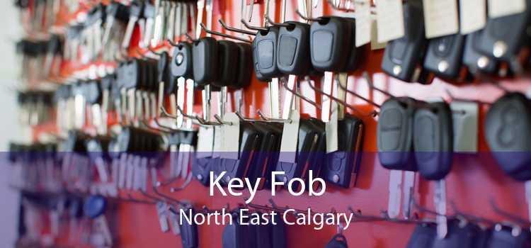 Key Fob North East Calgary