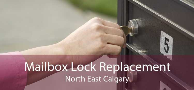 Mailbox Lock Replacement North East Calgary