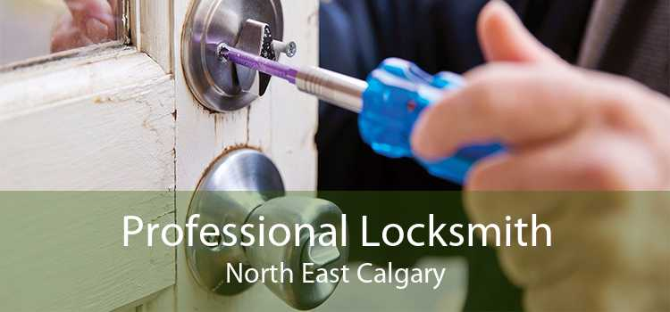 Professional Locksmith North East Calgary