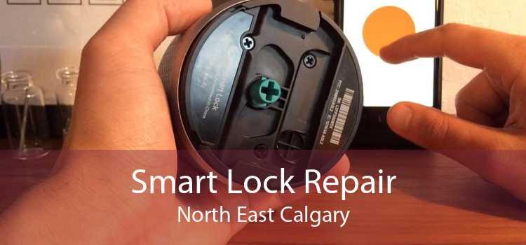 Smart Lock Repair North East Calgary